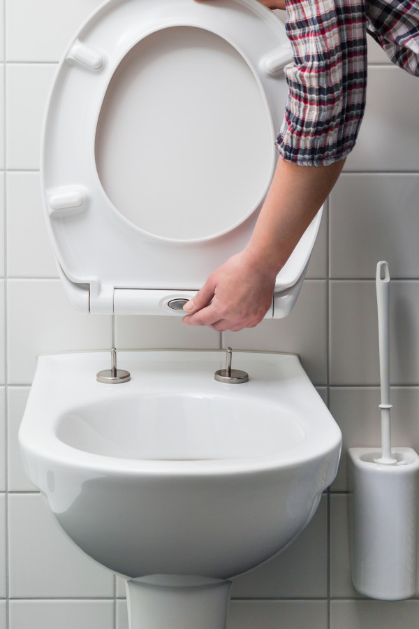 Toilet seat with quick release